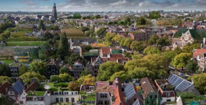 De grote voordelen van een groen dak